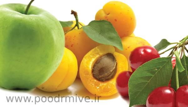تولید و عرضه ی پودر میوه خشک مرغوب