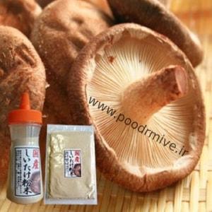 فروش پودر قارچ